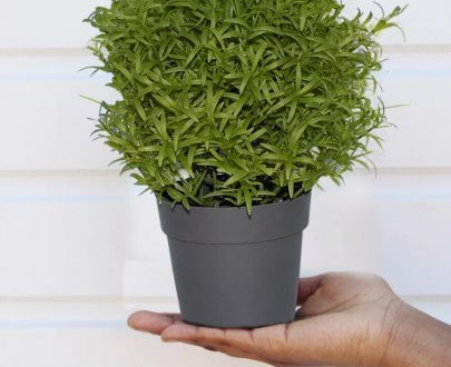 0209 Decoratives -Potted Plastic Artificial Plants - DeoDap