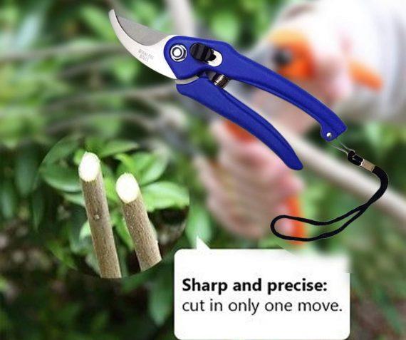 0465 Stainless Steel Garden Scissors - DeoDap