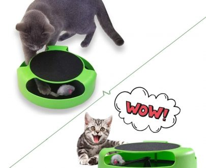 0176 Cat Interactive Toy (Cat Scratching Pad) - DeoDap