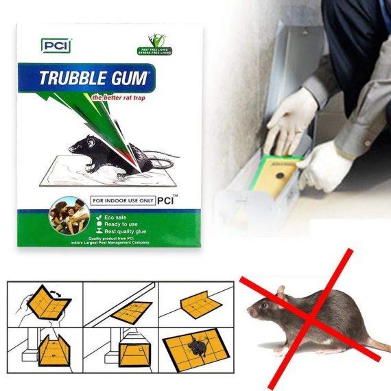 0247 PCI Cardboard Troublegum Small Size Mouse Trap-1pc - DeoDap
