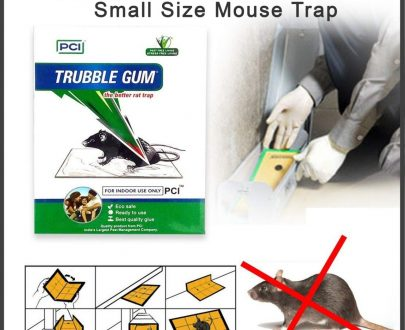 0247 PCI Cardboard Troublegum Small Size Mouse Trap-1pc - DeoDap