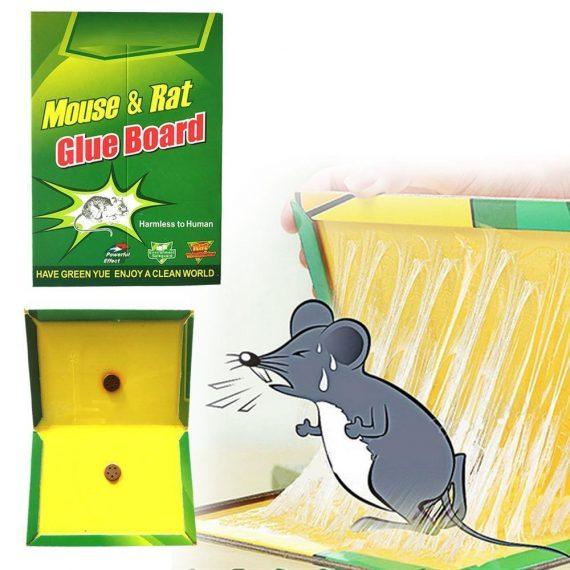 0202 Green Mice Glue Traps (1pc) - DeoDap