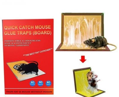 0203 Red Mice Glue Traps (1pc) - DeoDap