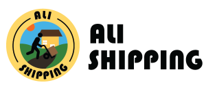Ali shipping Indian Dropshipping Service